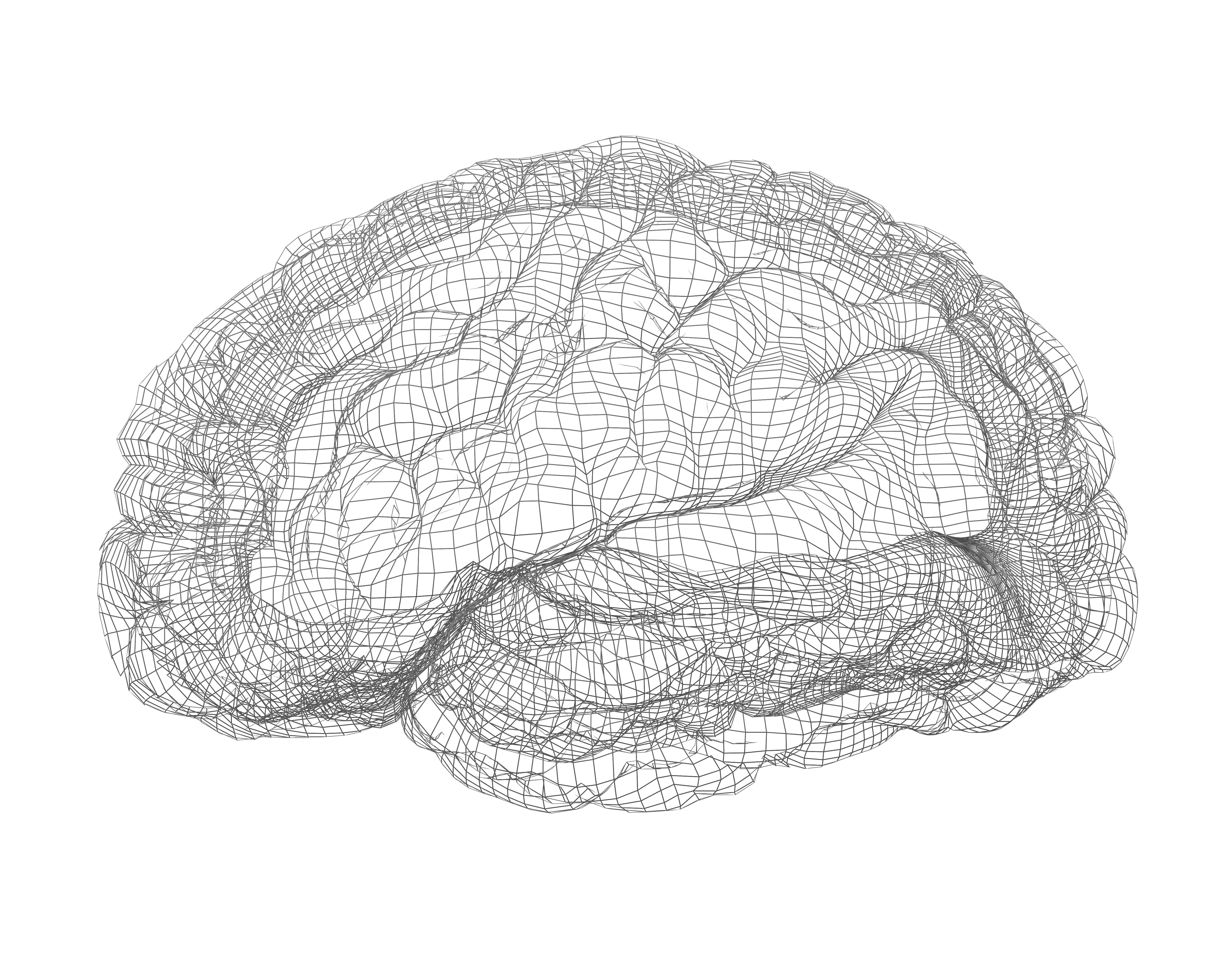 The Lieber Institute for Brain Development Establishes the World's Largest Posttraumatic Stress Disorder Postmortem Brain Repository